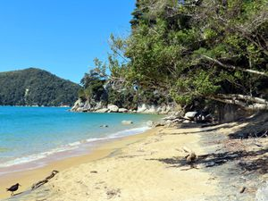 Le parc national ABEL TASMAN-2020-