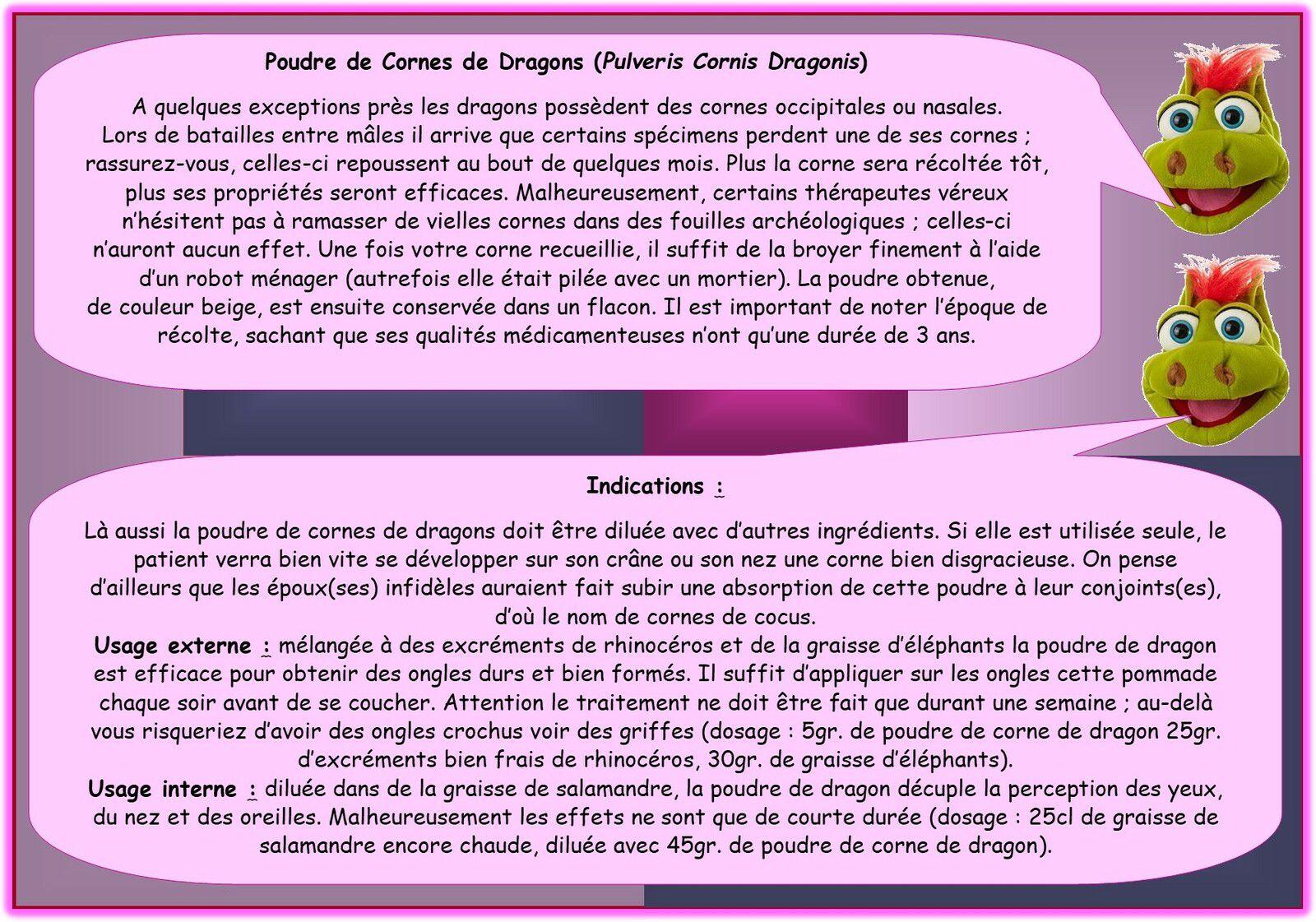DRACOTHICAIRE : Une profession méconnue