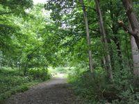 Hokkaïdo : Furano 富良野 : Les maisons du tournage du film 北の国から (Kita no kuni kara)