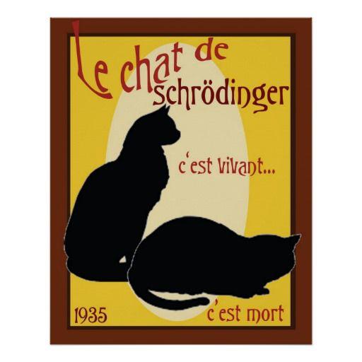 Quelques chats de Shrödinger