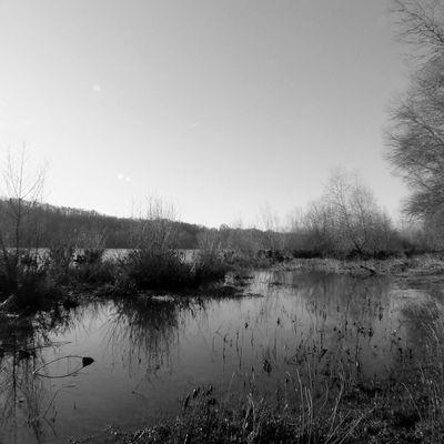 La Loire en janvier 2020
