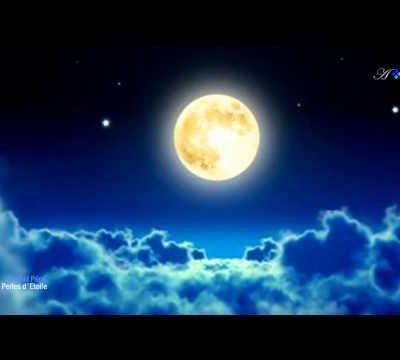 Bonne soirée à tous & toutes