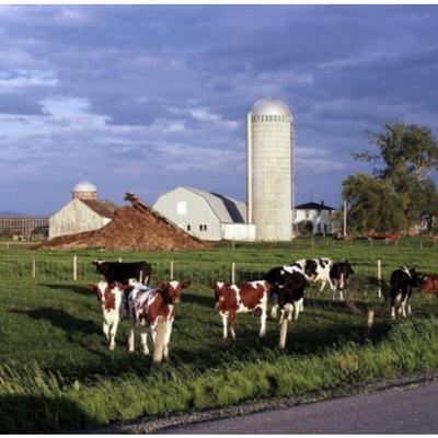 À la découverte d'un blog: «Agricolincredule»