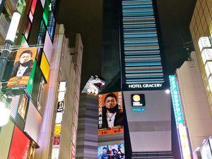 JAPON (Osaka et Tokyo) ⛩ 🇯🇵