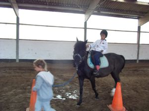 Stage Equitation Comines - 3 au 7 Aout