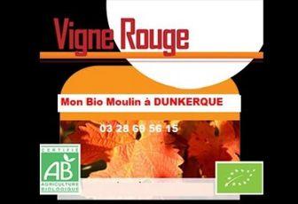 Vigne rouge à Dunkerque - Mon Bio Moulin à Dunkerque