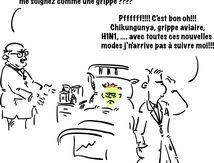 Chikungunya, grippe aviaire, H1N1 .... what else ?