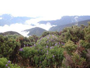 Tungurahua - 5023 m