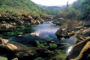 Le trail de la rivière bleue 26 avril 2009