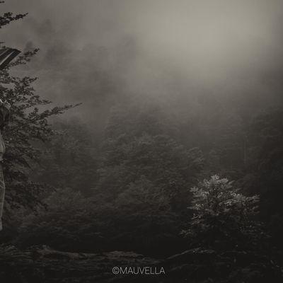 Dans la brume, partie I - Le Lac