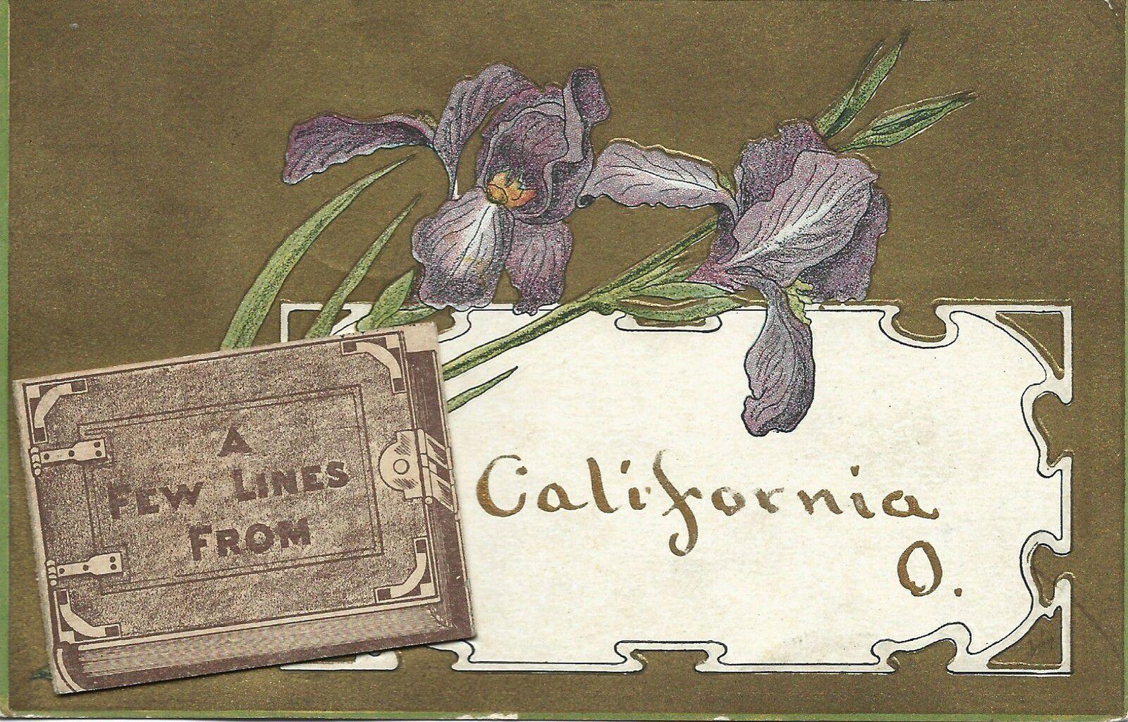 IRIS 2041  - 1908 - A FEW LINES FROM CALIFORNIA O.