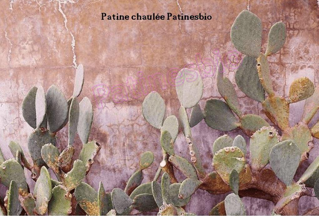peintures et enduits muraux naturels