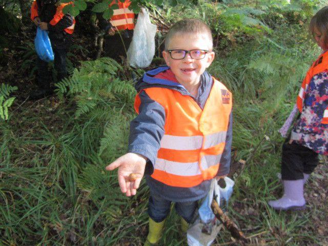 Dans la forêt, nous avons trouvé des fougères, des feuilles, du bois, et puis des glands, des ronces, de la mousse, des branches et des écorces. (Noah et Mya)