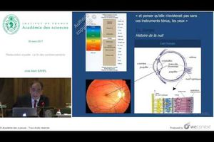 Vidéo - Réparer la vue, la fin des commencements - José-Alain Sahel