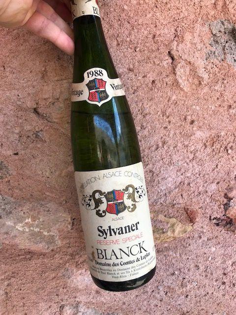 Série de 1988 au Domaine Paul Blanck (pique-nique chez le vigneron)