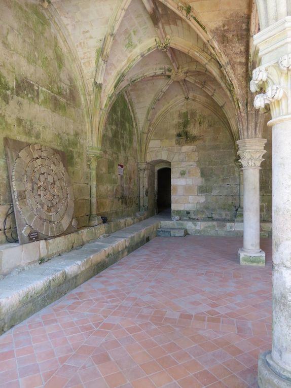 Abbaye de Fontdouce / 17