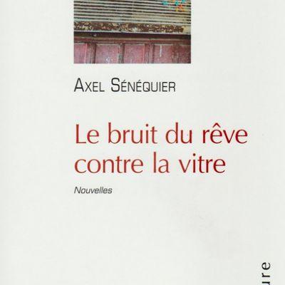 Le bruit du rêve sur la vitre d'Axel Sénéquier