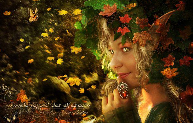 Féerie d'automne