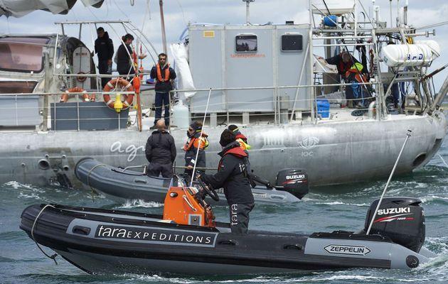 Tara quitte Lorient ce samedi, pour le Pacifique