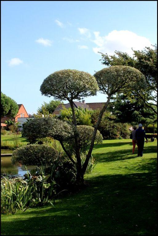 Balade en Flandres : Le jardin Bosselé,