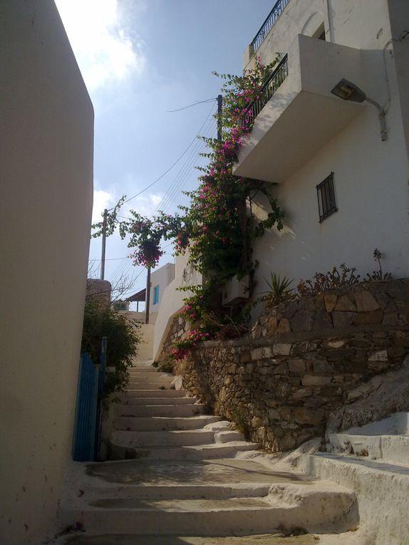 Album - Amorgos