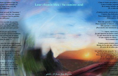 Leur chemin bleu / Su camino azul, Elizabeth Robin, Prix Arhur Rimbaud 2021