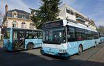 Bus : la grève s'enlise et tout le monde s'en fout, en fait