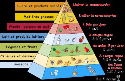 Petit rappel : Les recommandations et la répartition nutritionnelles /Small reminder : the nutritional recommendations and the distribution
