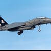 """Boeing F-15SG """"Strike Eagle"""" - 428th Fighter Squadron """"Bucaneers"""" - 10 years of the Peace Carvin V agreement"""