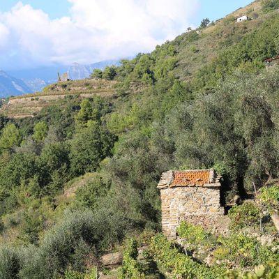 Perinaldo (IM) - una vista dalla Località Gasco