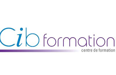 Formation distribution crédit consommation