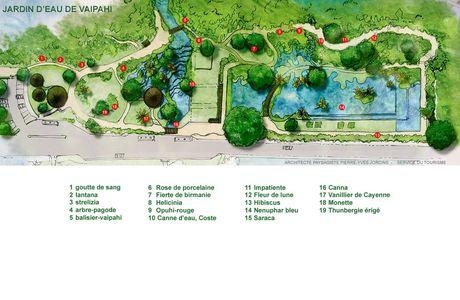 Les jardins d'eau de Vaipahi