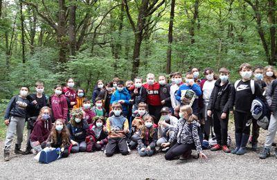 Les CM découvrent le milieu forestier