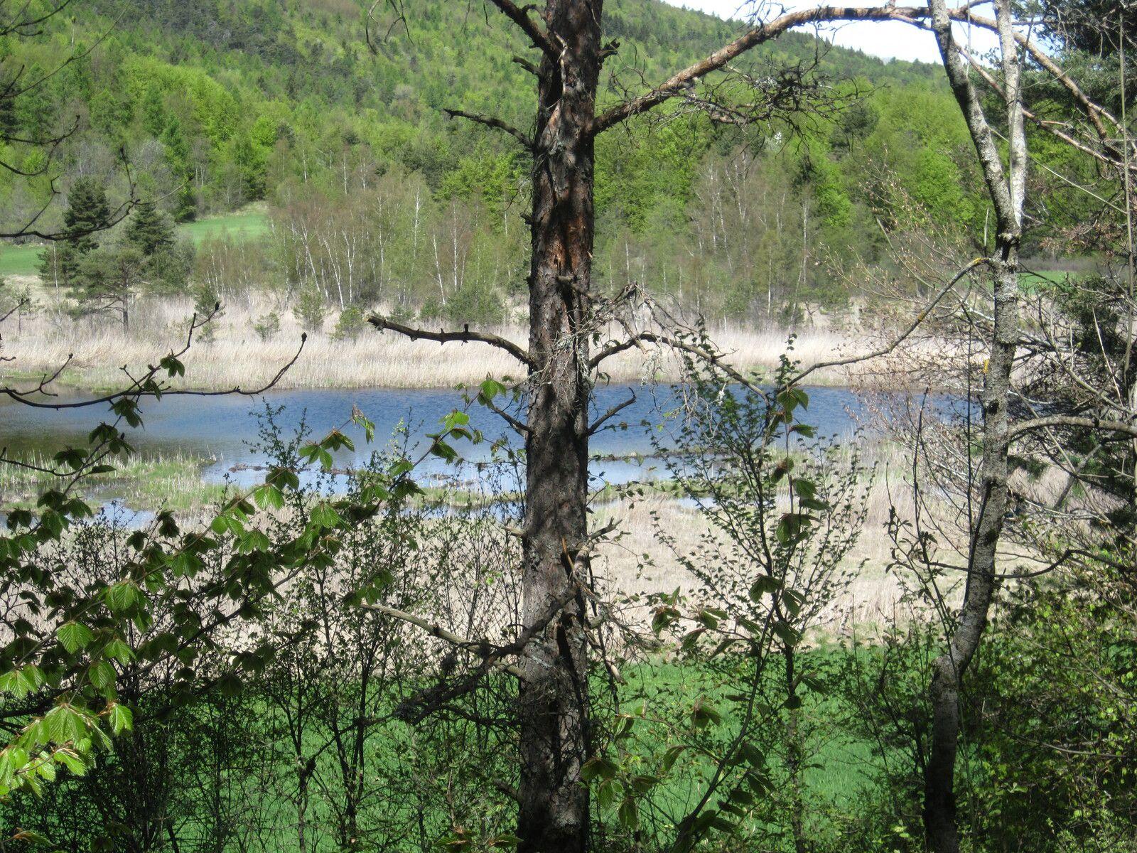 Le lac St Léger sur le bord du chemin; (Photo MR)