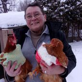 Elle trico(co)te pour ses poules