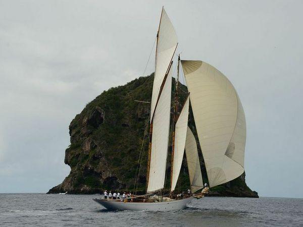 Panerai Transat Classique - Altair, premier voilier en Martinique