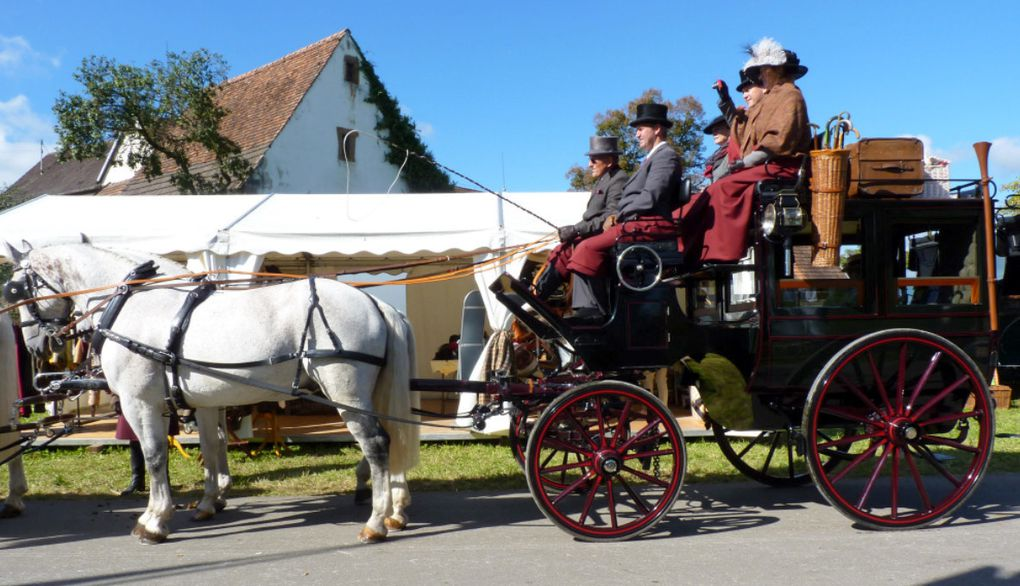 "Lossburg 2014: Photos du CIAT et ""Coaching trophy"""