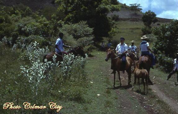 Neuf années (1976 à 1985) merveilleuses à la découverte de cette île chère à mon coeur.