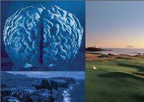 Conférence - Autime, TDA/H et autres troubles neurodéveloppementaux - 29-30 mars 2011