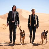 Exclusive: 'John Wick 3' Director on Why Halle Berry Became an Actual Dog Trainer for the Film