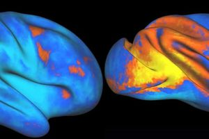 RT @NeuroscienceNew: Is the Ability to Control and...