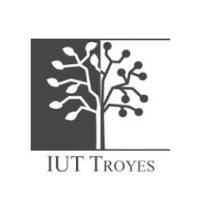 Images, réalités et fictions des rapports Nord-Sud - IUT de TROYES, 23 mars 2017