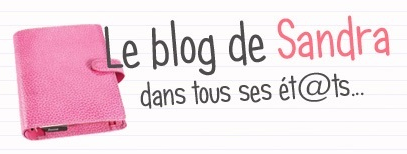 Interview de blogueuse #4 : Sandra vide son sac