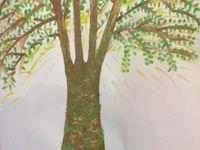 Cliquez sur les arbres pour les voir en entier !
