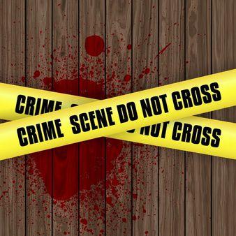 L'affaire Seznec est-elle un crime de sang ?