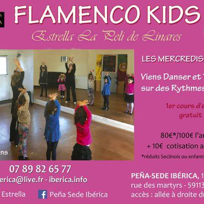 FLAMENCO ENFANTS LILLE NORD PAS DE CALAIS PICARDIE HAUTS DE FRANCE FLAMENCO KIDS