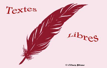 """""""Pierres"""", un poème de Barbara Bordes"""