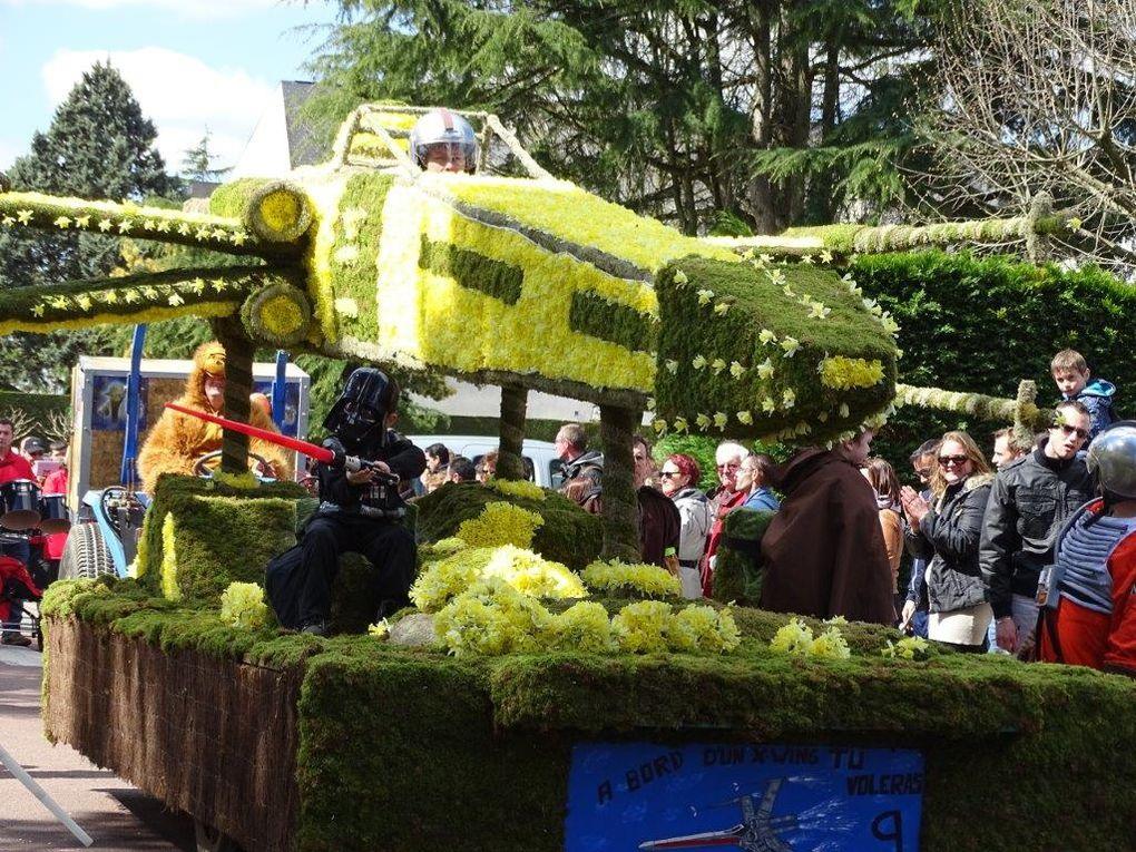 Fête des Jonquilles 2015 - St Etienne de Montluc