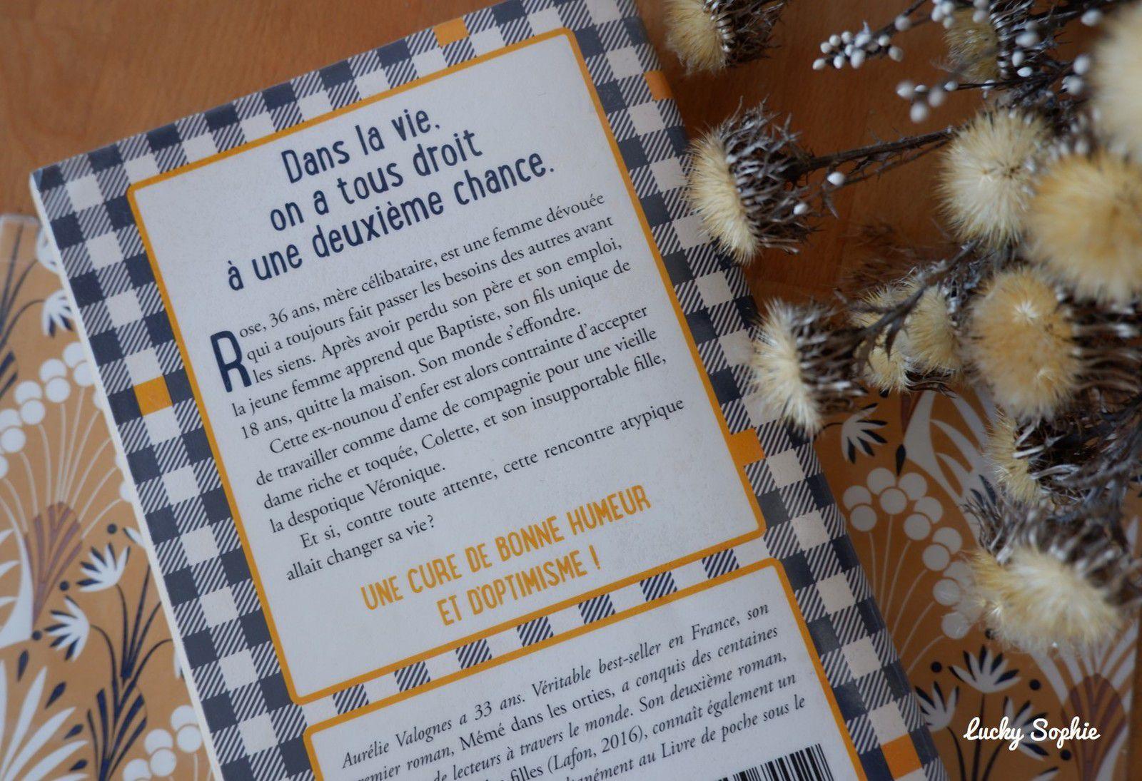 Minute papillon, roman sur la maternité d'Aurélie Valognes