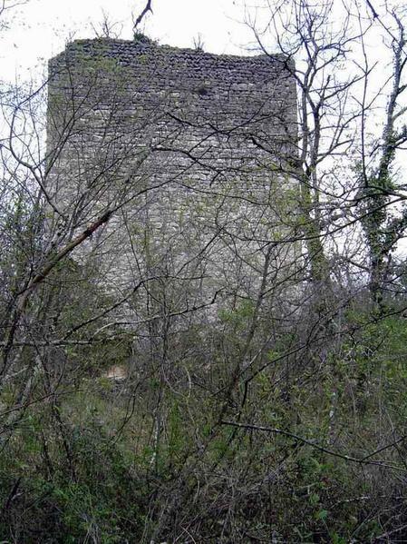 Diaporama château de Saint Nazaire en Royans